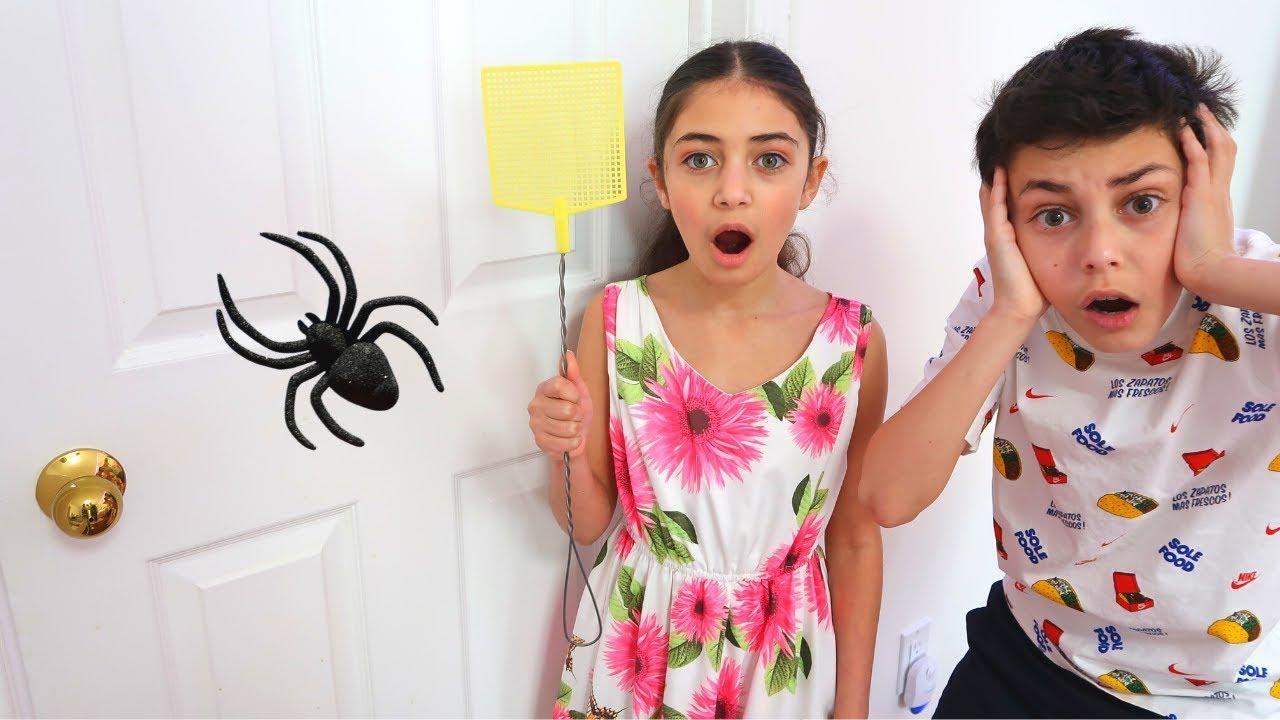 Heidi y Zidane intentan atrapar a la araña