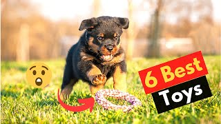 6 Best Toys for Rottweilers | Which Toy should you get for your Rottweiler puppy?