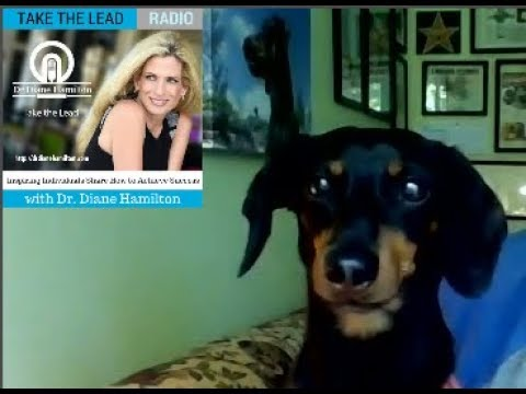 Dr. Diane Hamilton Crusoe The Celebrity Dachshund and Ryan Beauchesne Interview