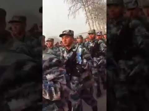 中国人民解放军原42军126师 (现海军陆战队126旅 )进驻福建泉州金井镇,举行入城仪式…  威慑台湾!