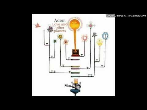 Adem  Human beings gather round