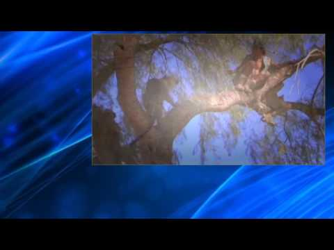 Wildboyz S02E07 East Africa