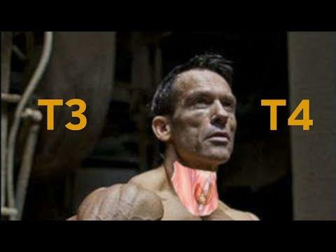 Почему нельзя есть гормоны Щитовидной железы ( тироксин - Т4 и Т3) для похудения (  на сушке )