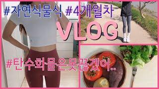 VLOG| 자연식물식 / 다이어트 브이로그 / 탄수화물…