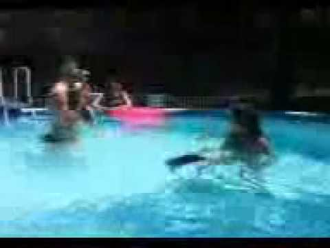 My Italian Greyhound And My Daughter 39 S Bunny Rabbit Swimming In Our Walmart Pool Youtube