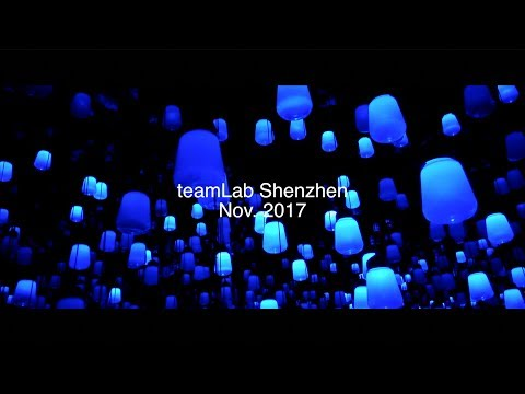 2017 11 Shenzhen teamLab Art Exhibition teamLab 舞動藝術展 深圳 未來遊樂園