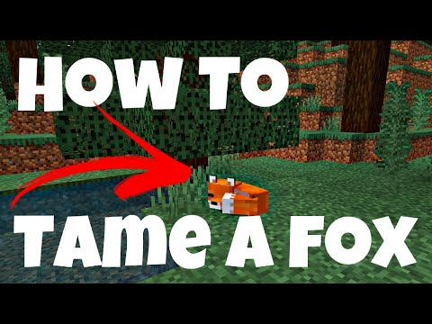 how-to-tame-a-fox-in-minecraft---minecraft:-how-to-tame-a-fox---(minecraft-taming-fox)-@swirlcraft