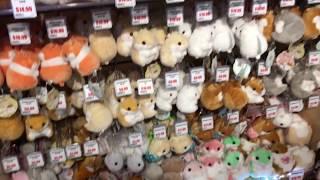 Otaku Market - Tokyo Central Market (Gardena, California)