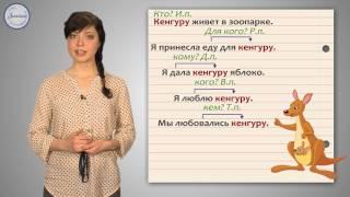 Русский 4 Понятие о несклоняемых именах существительных
