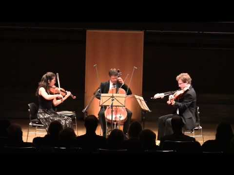 J.S.Bach BWV 988 - Goldberg Variations for String Trio