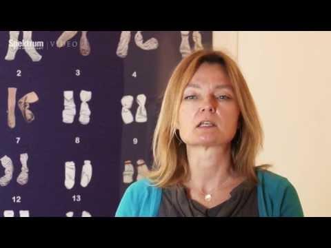 ENCODE: Das größte Projekt der Humangenetiker