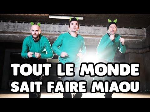 Tout le monde sait faire Miaou - Pascal Parisot - LE CLIP by ChaPacha