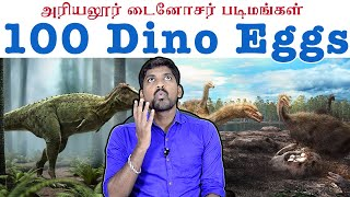 Hundreds of Dino Eggs Ariyalur | Tamil Pokkisham | Vicky | TP