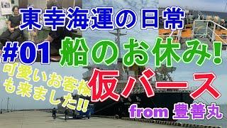 【日常編1】船のお休み「仮バース」にお邪魔してみた。かわいいお客様も!豊善丸・東幸海運株式会社 元 女性船員さん来船! 横須賀仮バース 内航貨物船