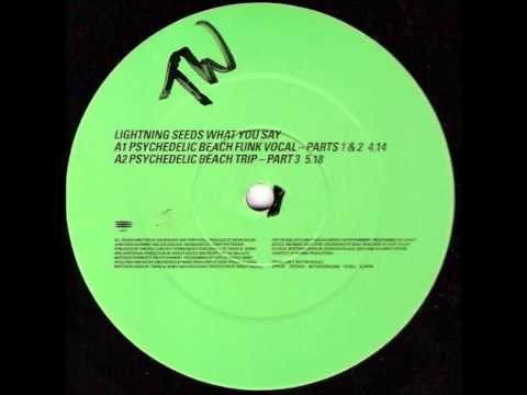 Lightning Seeds - What You Say (Wiseguy Remix - Instrumental) mp3
