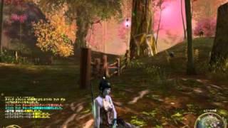 オンラインMMORPG「The Tower of AION」ゲームプレイ