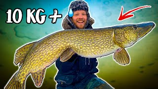 10+ GIANT PIKE CAUGHT FROM ICE (Dream Fishing) | Team Galant