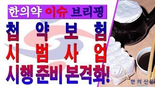 첩약 건강보험 시범사업 시행 준비 본격화!