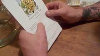 Growing pistachios - Part 1