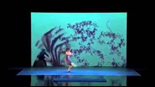 Красивый танец теней на американском шоу талантов 2014