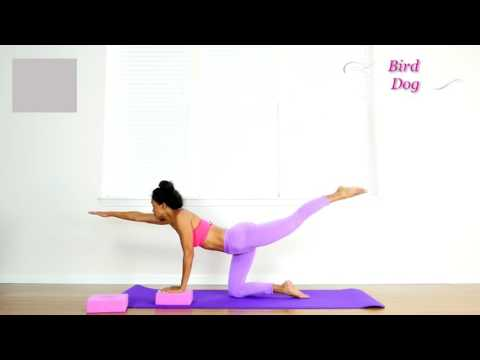 Yoga Bird Dog pose exercise benefits & variations