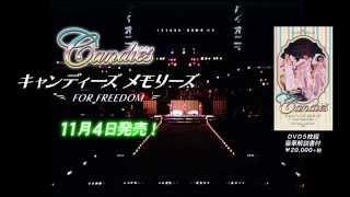 伝説の解散コンサート「キャンディーズ ファイナル・カーニバル For Fre...