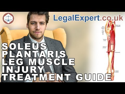 Soleus Plantaris Leg Muscle Injury Treatment Guide ( 2019 ) UK