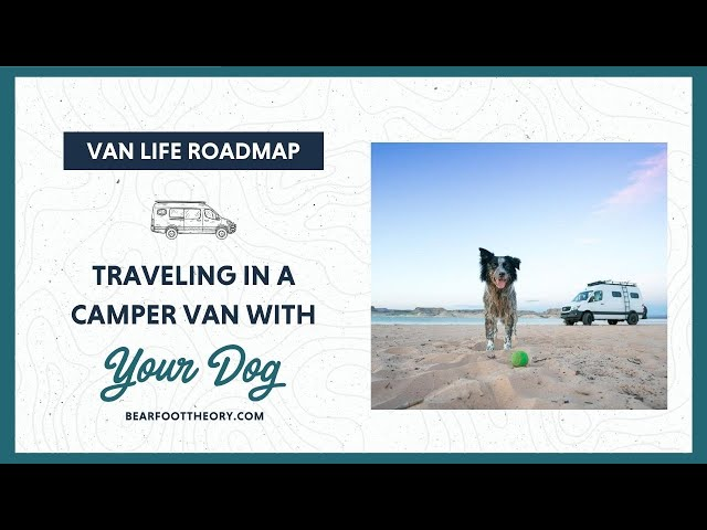 Van Life: Tips for Living in a Van with a Dog
