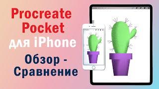 procreate Pocket. Обзор-сравнение