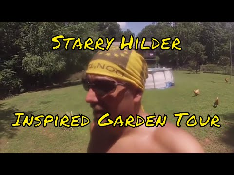 Starry Hilder Inspired Garden Update: Mistakes, Triumphs, And Future Plans