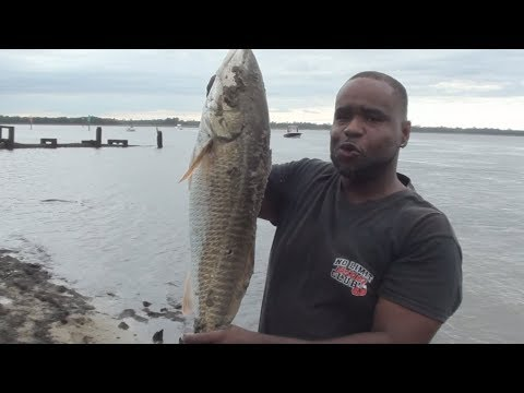 Big Flounder And Red Drum Fishing NC