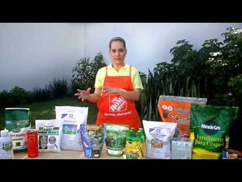 Dale a tu jardín el fertilizante adecuado
