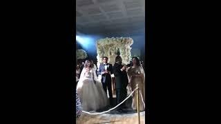 Evo kako je Ceca nastupila na najskupljoj romskoj svadbi u Rimu!