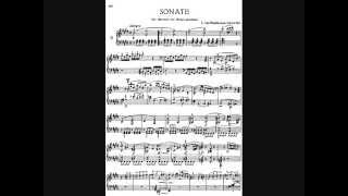 Beethoven Sonata No. 9 In E Major, Op. 14 No. 1 1st Movement