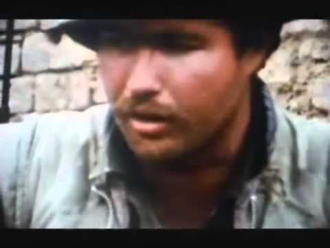 Tet Offensive War Footage