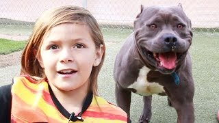 Why Are Kids Reading To Shelter Animals?