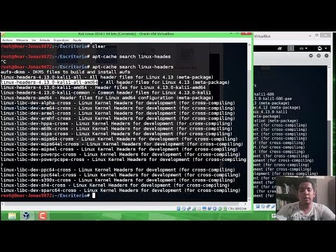 Curso 04.03 VBox Kali Linux instalacion de Guest additions corrección de problemas