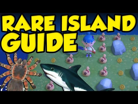 ANIMAL CROSSING RARE ISLAND GUIDE! How To Get Tarantula Island, Bell Island, And Shark Island!