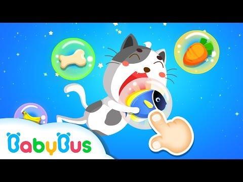 ベビーなかよし Babybus 子供幼児向けクイズランド Google Play のアプリ
