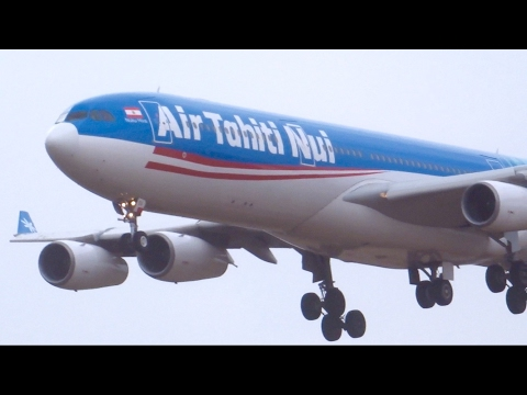 WS! go around? NO…Super perfect landing  Air Tahiti Nui A340-313[F-OLOV] NRT16L‼︎