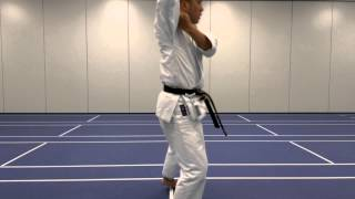 Ryan Hayashi - JKA Karate Instructor - HEIAN GODAN Kata