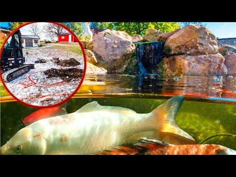 How Tussey Builds A KOI POND For $7k (see How YOU CAN TOO!)