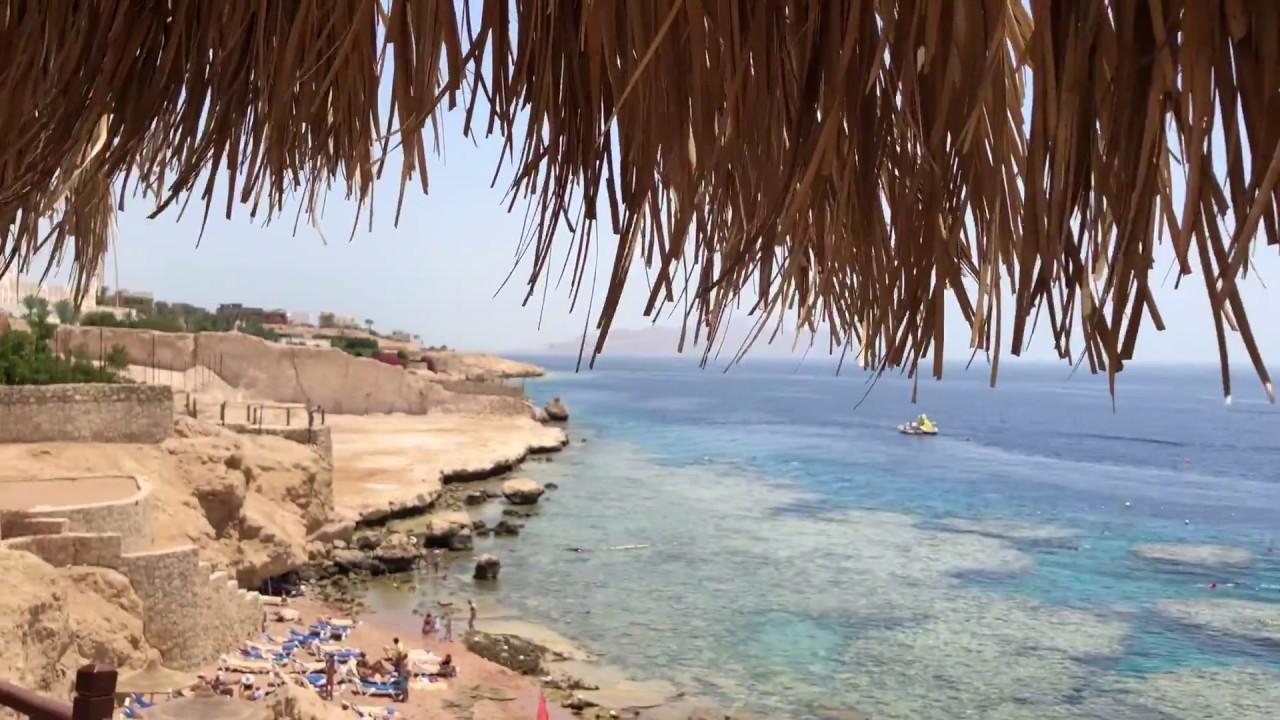 Картинки по запросу Пляж: Шаркс Бей