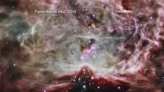 A Tour of Flame Nebula