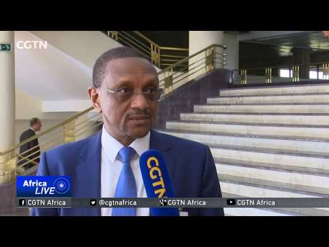 AU official roots for African-based solution to C.A.R. Crisis