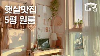 [구독 이벤트] 햇살맛집 5평 원룸 룸투어? 맥시멀리스…