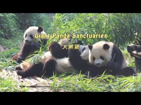 Travel Sichuan China