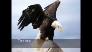 This is a story of an Eagle -  Need CHANGE For Our Life (Motivation Video)