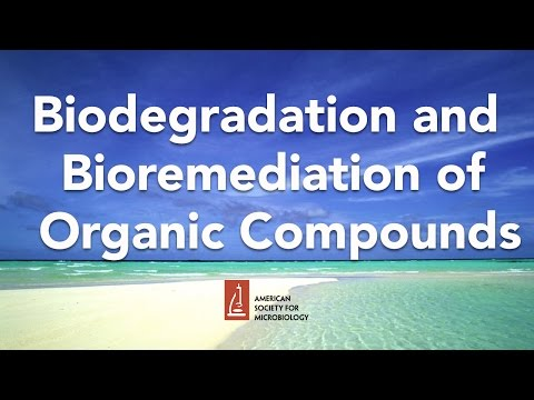 Biodegradation and Bioremediation of Organic Compounds by Lawrence Wackett, PhD