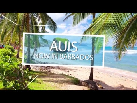 Caribbean Medical School | AUIS is in Barbados!